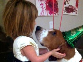 Dog with party hat and little girl